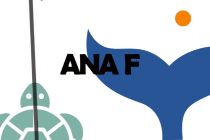 Ana Fontoira